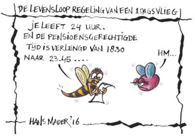 Levensloop van een eendagsvlieg door cartoonist Hans Mader